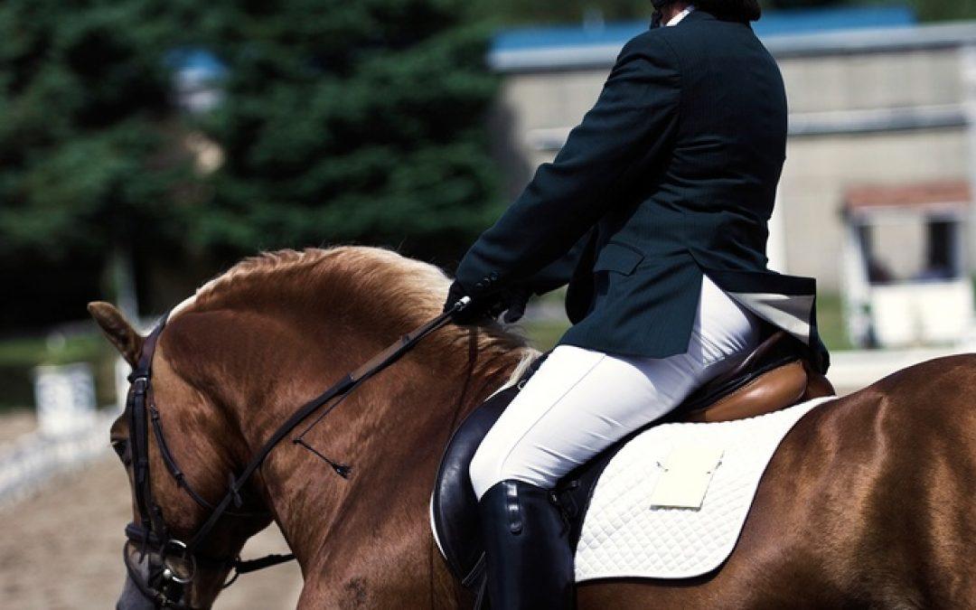 Quello che il mio istruttore di equitazione conosceva sull'apprendimento, ma che nessuno ti ha mai detto.