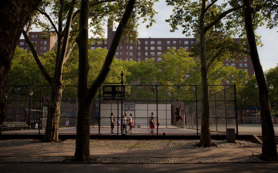 Imparare a studiare non è facile come giocare a basket… per un semplice motivo